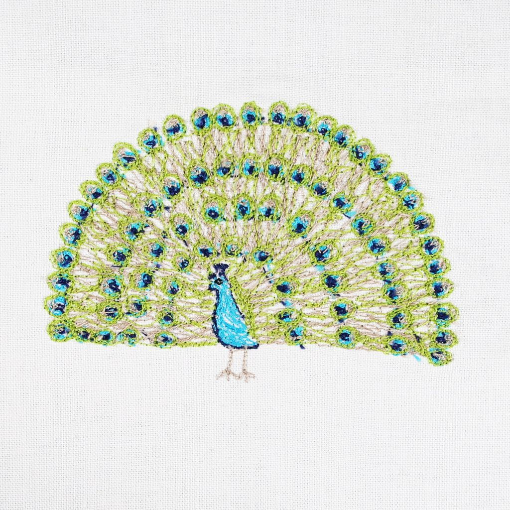 Hundred Day Project - Day 92 Peacock